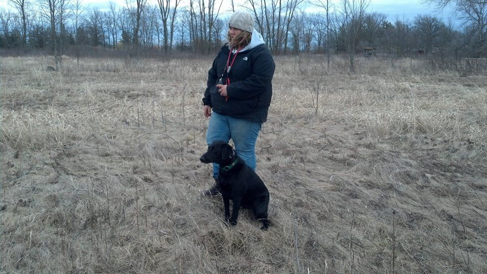 how to become a professional gun dog trainer