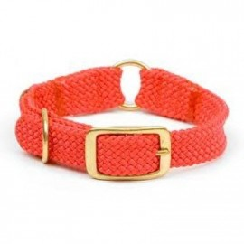 "Braided 1"" Hunters Orange Center Ring Dog Collar (18""-24"") By Mendota Dog Products"