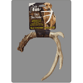 Extra Large Real Shed Antler by DogBone Products DB FAL